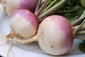 These white turnips, not the big yellow rutabaga sort