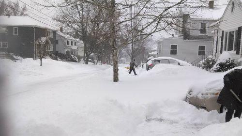 snowfallJanuary_2015_nor'easter_snowfall_in_Watertown,_MA