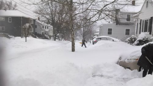 snowfallJanuary_2015_nor'easter_snowfall_in_Watertown,_MA