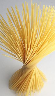 Spaghetti_spiral,_2008
