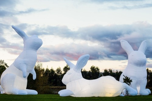 Intrude (detail) Amanda Parer 2015