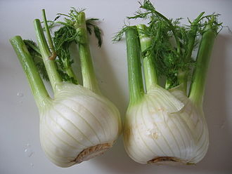 This is also known as Florence Fennel - a little more anise then celery; good crunch, too.