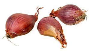 shallots are between onions and garlic in the taste spectrum. Substitute as you wish.