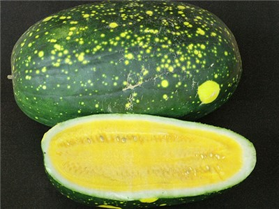 Moon and Stars Yellow Watermelon Baker Creek Heirloom Seeds