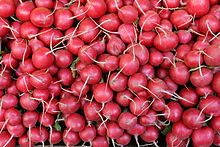 No fancy radishes - red on the outside and white on the inside radishes