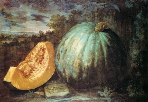 The Pumpkin - Bartolomeo Bimbi - second half 17th centuryi