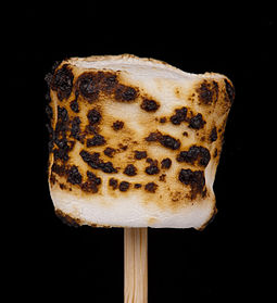 Marshmallowtoasted