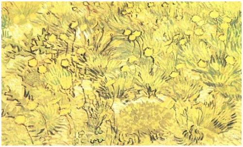 vincent VanGogh April1889Field-of-Yellow-Flowers,-A