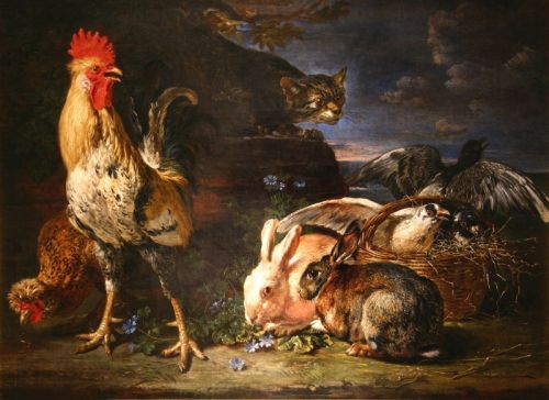 rabbit and rooster 17thc