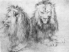 Durer_lions_(sketch)1520