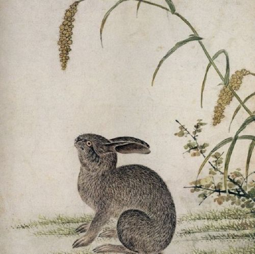 Rabbit by Choi Buk (1712- 1760).
